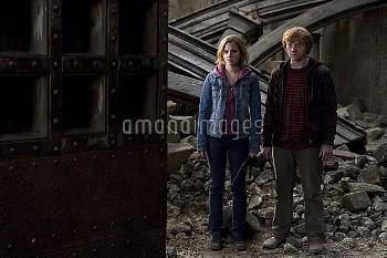 『ハリー・ポッターと死の秘宝 PART2』 2011