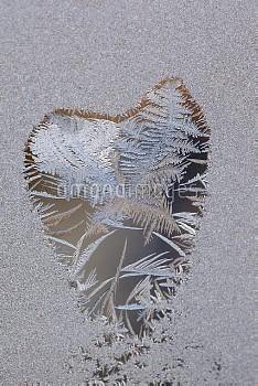 Frost forming heart shape on window