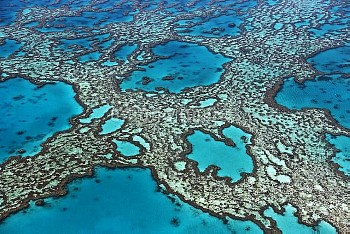 Coral formations on Hardy Reef, Great Barrier Reef, Queensland, Australia