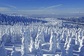 地蔵山の樹氷と飯豊連峰 蔵王