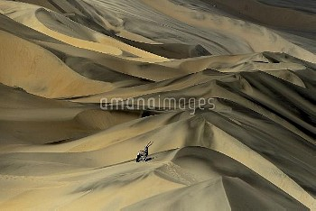 Gemsbok (Oryx gazella) in sand dunes, Namibia. Finalist in the Mammals Category of the Wildlife Phot