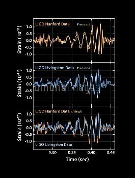 Gravitational wave signals