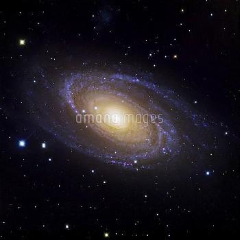 Bode's Galaxy (M81), optical image