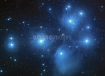 The brilliant stars seen in this image are members of the popular open star cluster known as the Ple