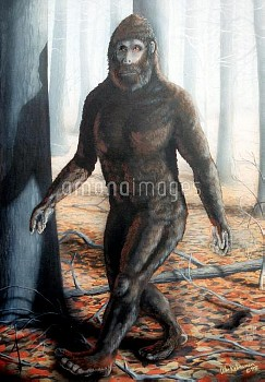 Painting by William M Rebsamen interpreting Bigfoot as Gigantopithecus