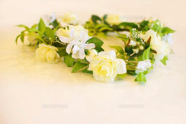 花かんむり07800010038の写真素材イラスト素材アマナイメージズ