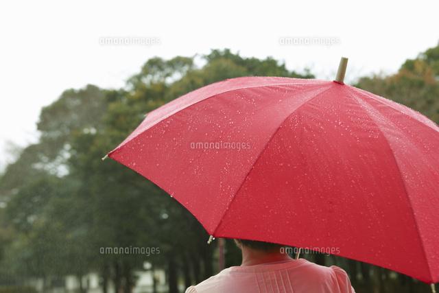 「雨の日 傘 女性」の画像検索結果