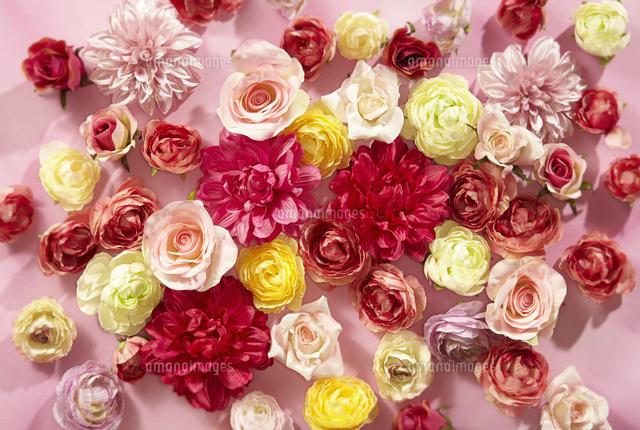 かわいいお花の背景素材10132111289の写真素材イラスト素材アマナ