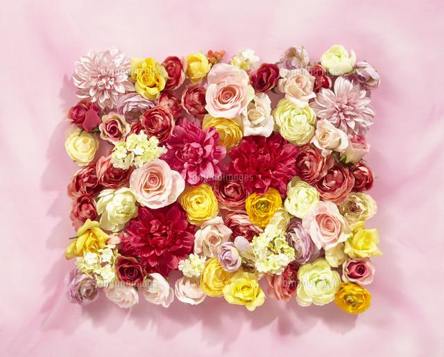 かわいいお花の背景素材10132111314の写真素材イラスト素材アマナ