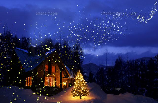 宙を舞う星とクリスマスツリーのある家の風景10132111512の写真素材
