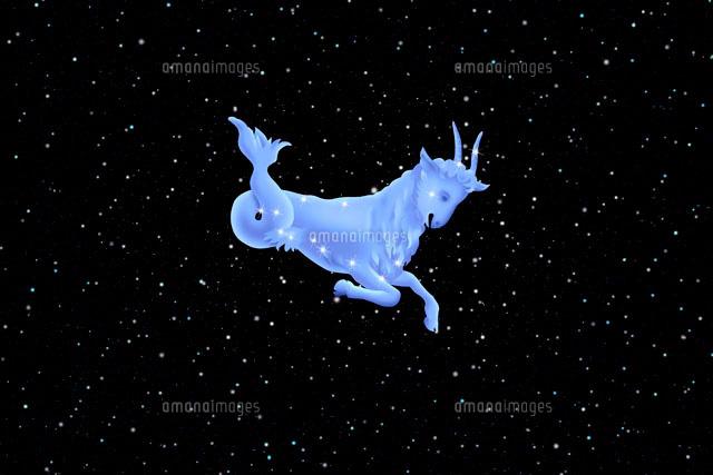 夜空にやぎ座12星座10141000267の写真素材イラスト素材アマナ