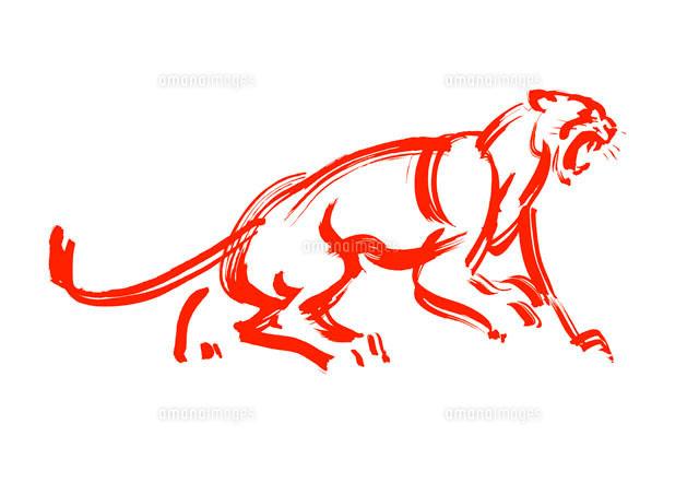 威嚇する赤のライオン 筆のイラスト10155000174の写真素材イラスト