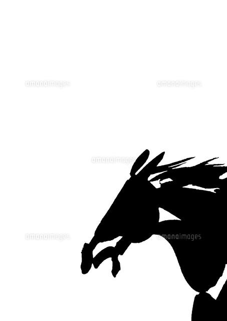 白地左向き馬の頭10155000708の写真素材イラスト素材アマナイメージズ