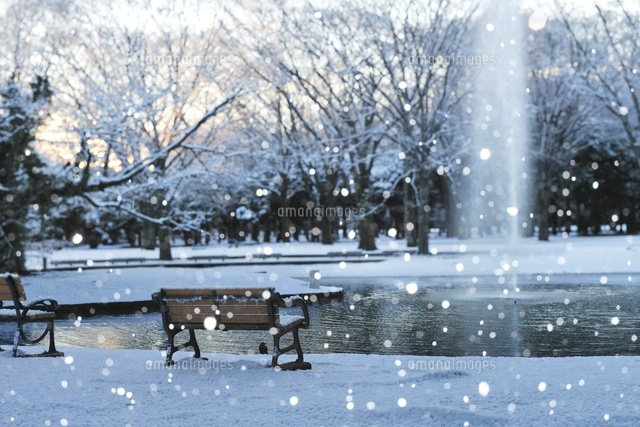 積雪の都心の公園