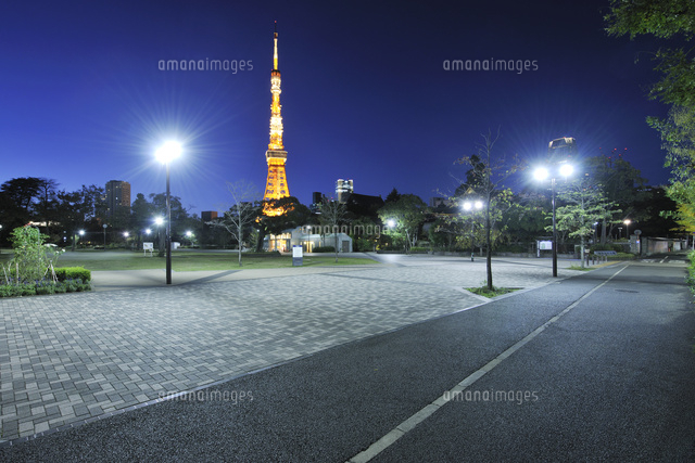 東京タワーと芝公園