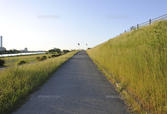 多摩川土手の坂道10168003817の写真素材イラスト素材アマナイメージズ