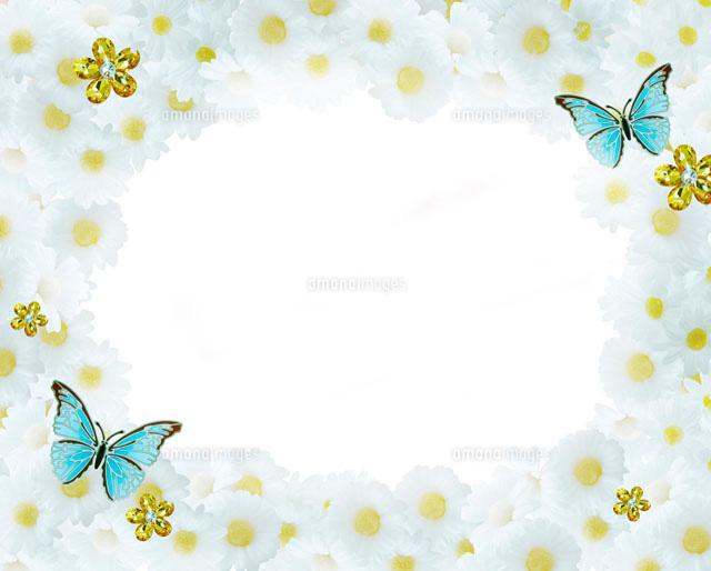 白い花と蝶のフレーム10169000620の写真素材イラスト素材アマナ