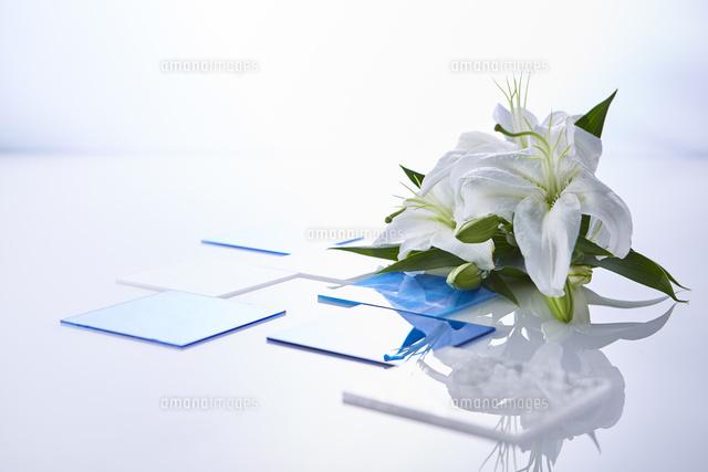 反射する板に置かれたユリの花と周りに置かれたガラスプレート