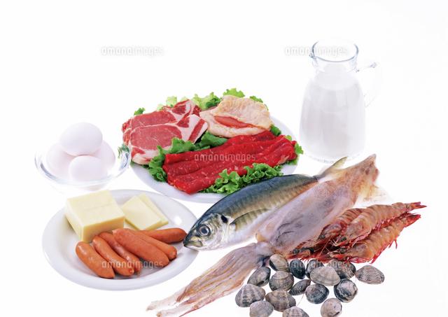 動物性タンパク質源食品[10285001910]の写真素材・イラスト素材 ...