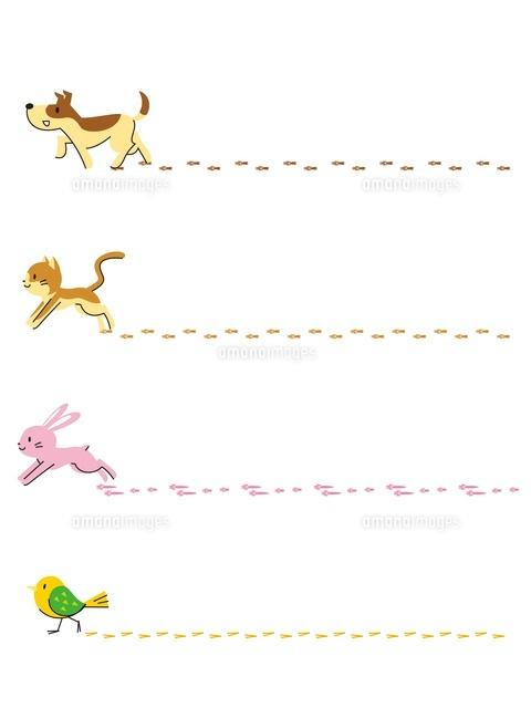 フレーム 足跡 犬 猫 ウサギ 小鳥 の写真素材 イラスト素材 アマナイメージズ