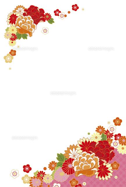 年賀状花赤10423000931の写真素材イラスト素材アマナイメージズ