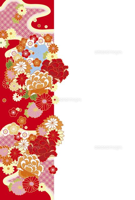 年賀状花の帯赤10423000937の写真素材イラスト素材アマナ