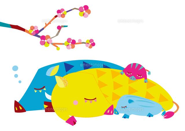 イノシシの親子と梅の花10431000387の写真素材イラスト素材アマナ