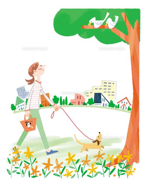 ワンコと散歩 小さな楽しみ10473000142の写真素材イラスト素材