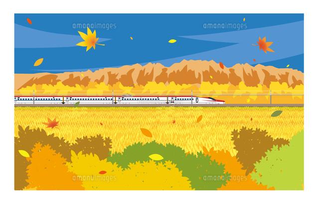 E6系新幹線こまち 秋の風景10711000026の写真素材イラスト素材