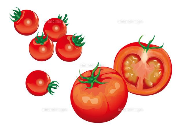 野菜 トマト プチトマト10717000001の写真素材イラスト素材アマナ