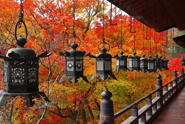11月 紅葉の談山 たんざん 神社 大和の秋景色 10738003711 の写真素材 イラスト素材 アマナイメージズ