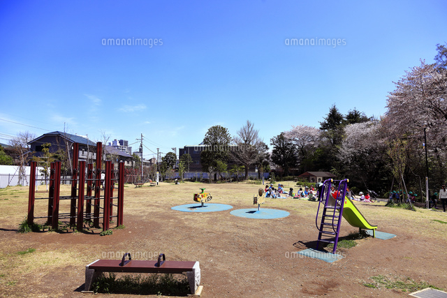 おとめ山公園