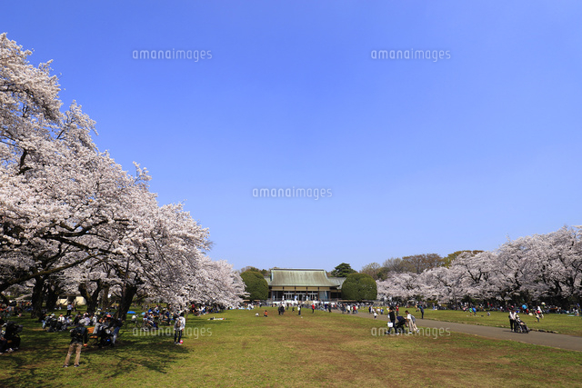 都立小金井公園