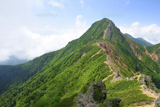 八ヶ岳横岳付近より望む夏の赤岳10828000411の写真素材イラスト