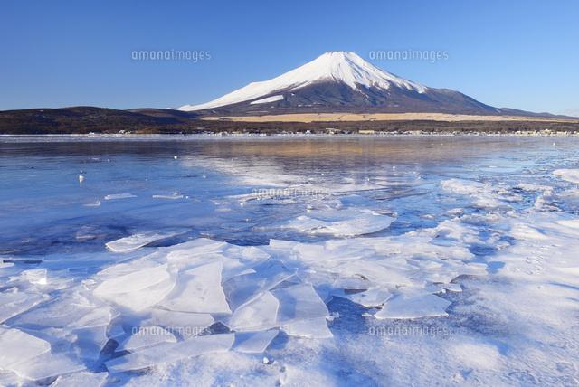 山梨県 結氷する山中湖と富士山[...