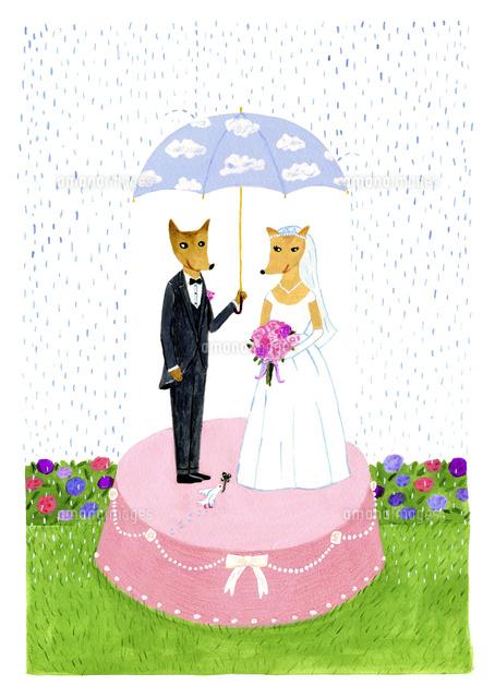 雨の中の結婚式10918000009の写真素材イラスト素材アマナイメージズ
