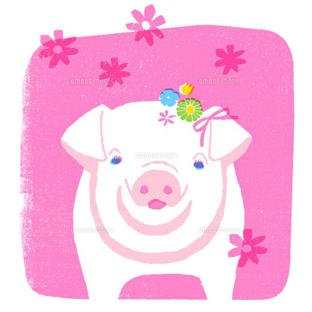 花飾りを付けたピンクのブタ10933000017の写真素材イラスト素材