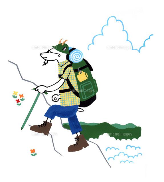 ヤギの山登り10940000001の写真素材イラスト素材アマナイメージズ