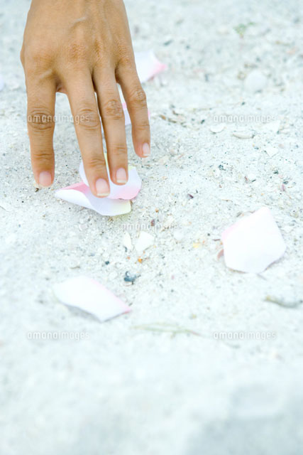 Hand touching petals scattered on sand