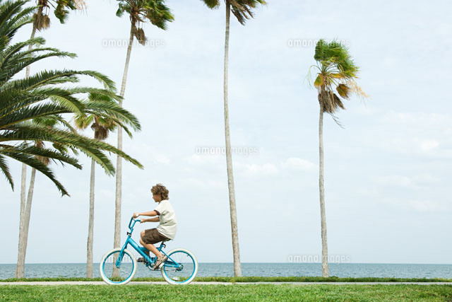 Boy riding bicycle beside palm trees