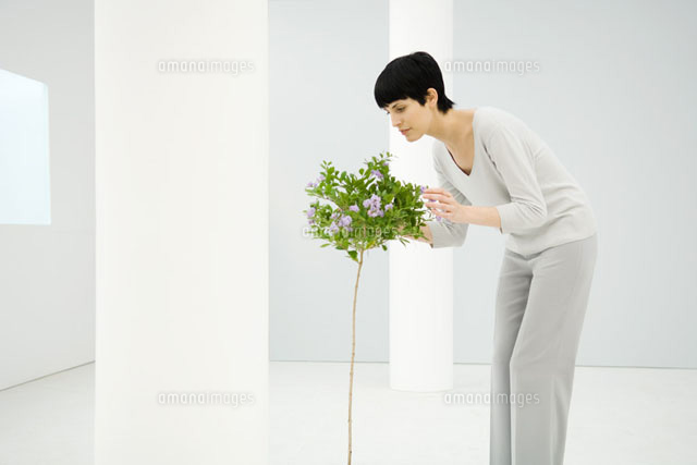 Woman indoors, smelling flowering tree