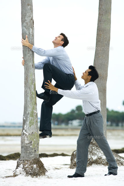 Businessman helping associate climb tree