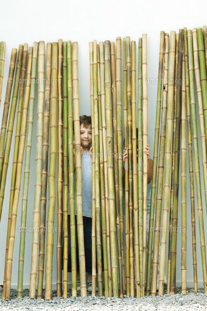 Brother and sister standing behind bamboo