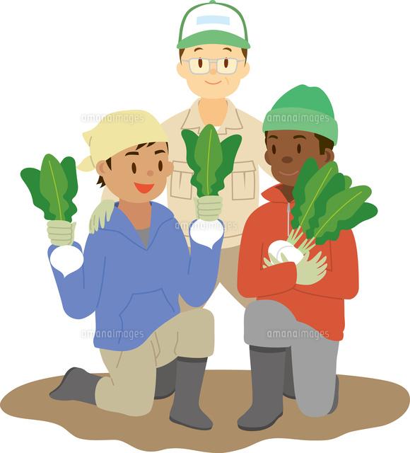 農業に従事する外国人技能実習生11002068802の写真素材