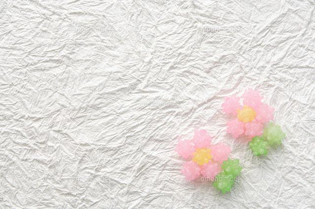 金平糖で作った花11004030186の写真素材イラスト素材アマナイメージズ