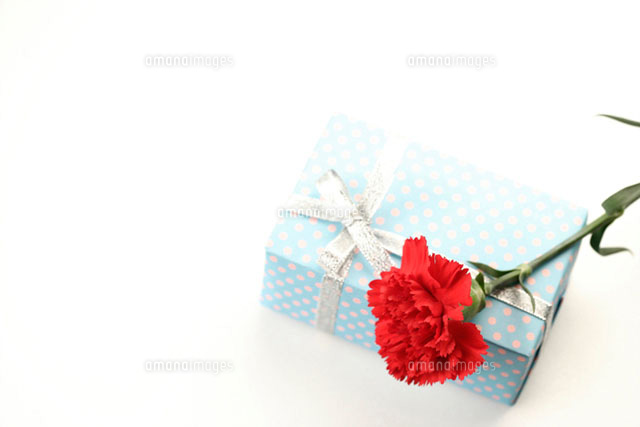 Carnation on a wrapped gift