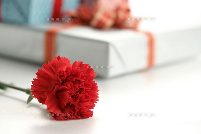 Carnation and gifts beside