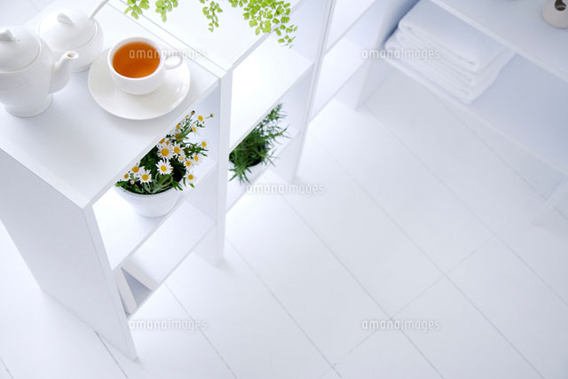 shelf with plants and cup