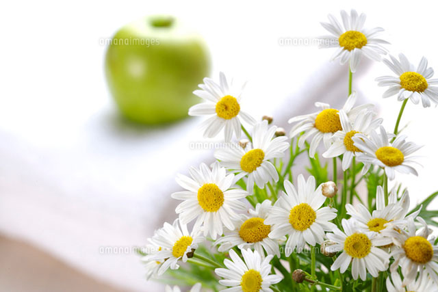 Bunch of Daisy with  green apple behind
