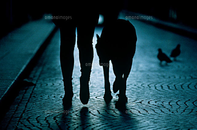A person walking their dog